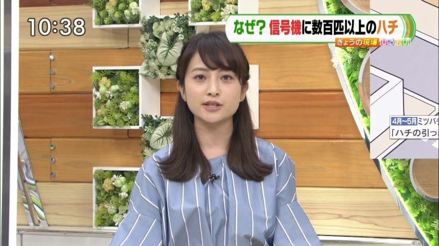 日比麻音子アナの高校やミスコンは?ひるおびやNスタでかわいいと話題!