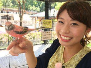 石川テレビ河谷麻瑚アナがかわいい!高校や大学のプロフィール!